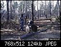 -pulpwood-saw-2-jpg